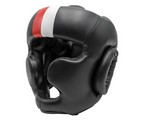 CASCO  POMULOS FUJI BASIC