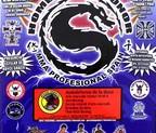 DVD HOMBRES DE HONOR II MMA PROFESIONAL