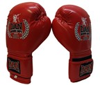 GUANTES DAN BOXING DEPT. PROJECT CARBON ROJO