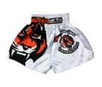 PANTALON BRUISER SATEN TIGER